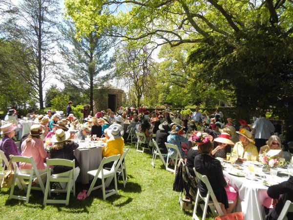 """Hats in Bloom"" is a very popular spring luncheon for the Knoxville Botanical Garden. (Blue Streak photo)"